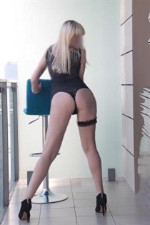 Lamman, escort in Spain - 12641