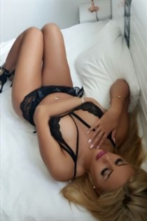 Pooya, escort in Spain - 5416