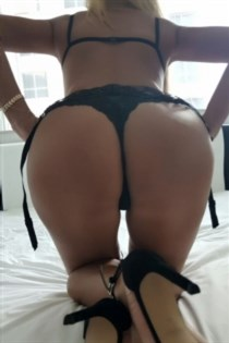 Pooya, escort in Spain - 8709